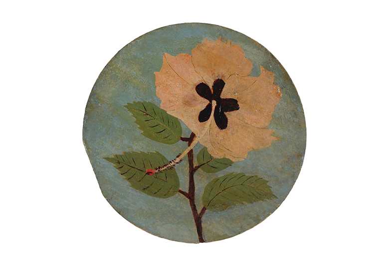 14_FWalter_Untitled_Pale_hibiscus_Spool_143